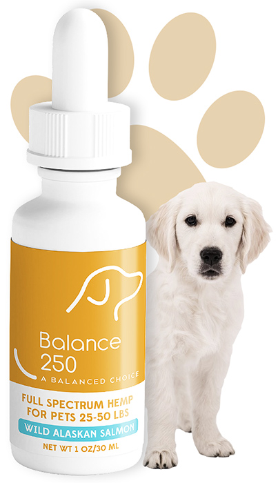Balance 250 CBD Oil for Pets